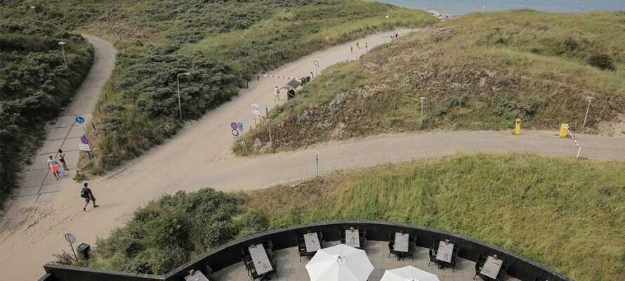 Nyd det gode vejr på hotellets terrassen og gå en tur på stranden og bliv frisket op af den salte havluft