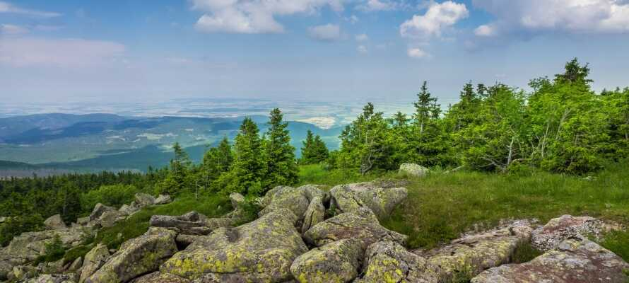 Bloksbjerg ligger i Nationalpark Harz, som byder på alt hvad der forventes af en aktiv ferie.