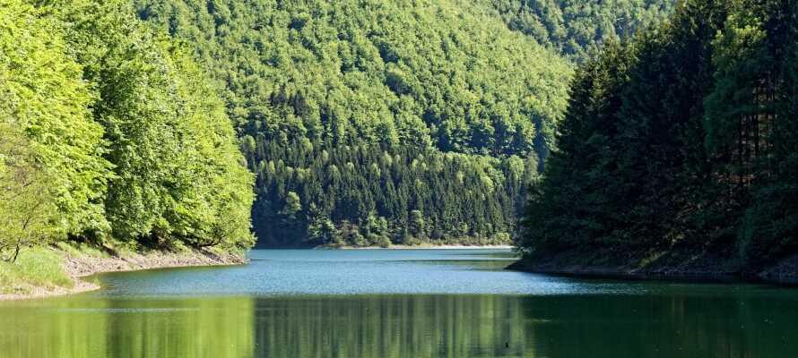 Oplev de fantastiske naturomgivelser i området, som er helt perfekt til vandre- og cykelture