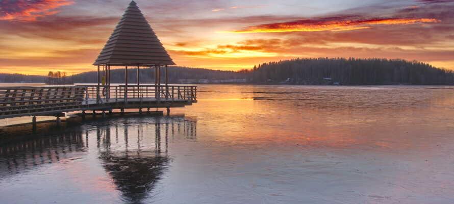 Nyt den vakre naturen i nærheten av Lindesjöns nordlige strand, mellom Bottenån og Lilla Lindesjö