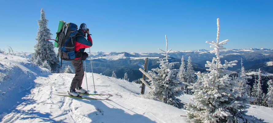 Området er ideelt for både sommer- og vinterferie med gode muligheder for vandreture og skiaktivteter