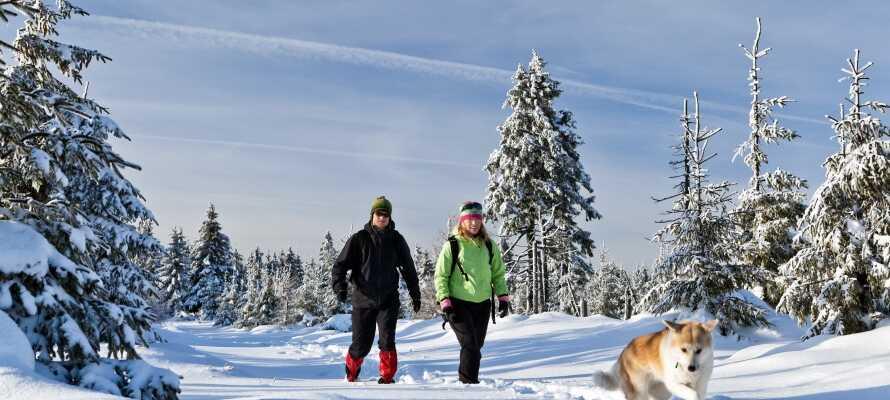 Die Gegend ist ideal für Wanderurlaube oder Skiferien für die ganze Familie.