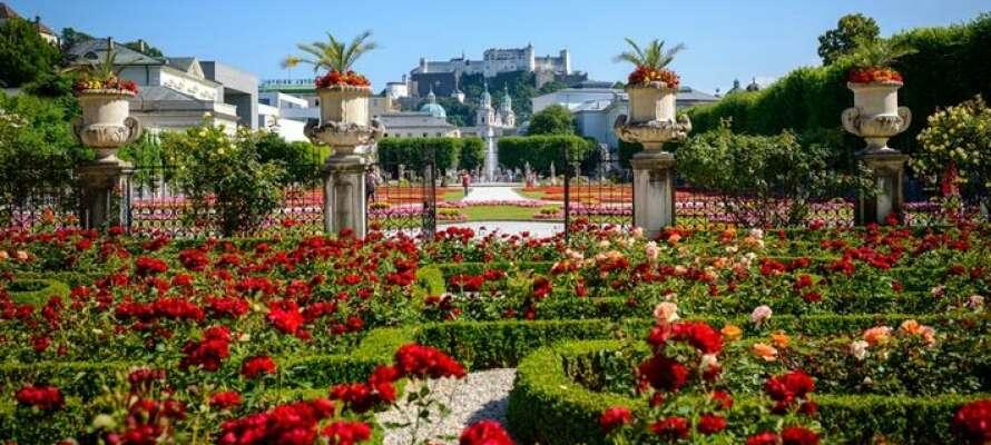 Besøg de smukke Mirabell-haver og Hohensalzburgfæstningen.