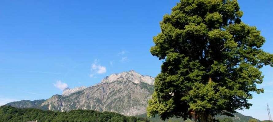 Der er masser af muligheder for at få sig en aktiv ferie i Østrig.