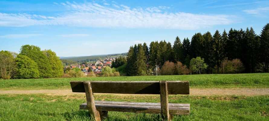 Udforsk Harzens skønne natur med vandreruter lige udenfor hotellets dør.