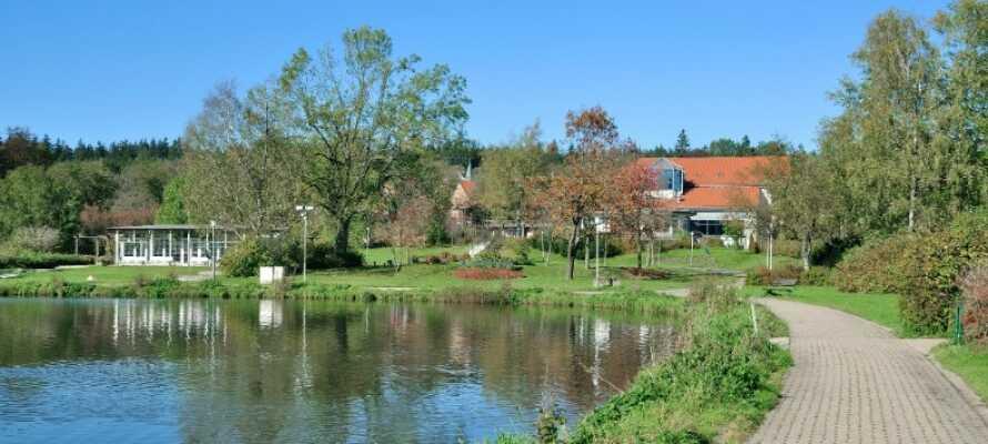 Det lille familiedrevne Berghotel Hahnenklee, har en vakker beliggenhet nær Kranicher Teich, sørvest for Harzens hovedby, Goslar.