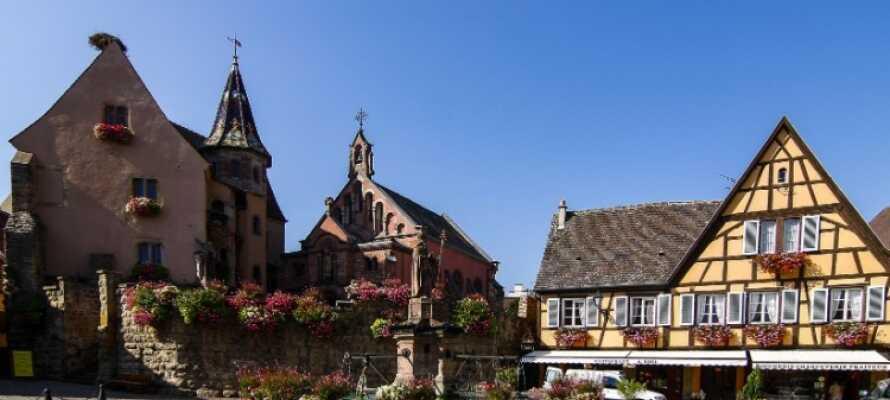 I bor i kort afstand fra Harzens hovedby, Goslar, som bl.a. byder på en charmerende UNESCO-listet gammel bydel.