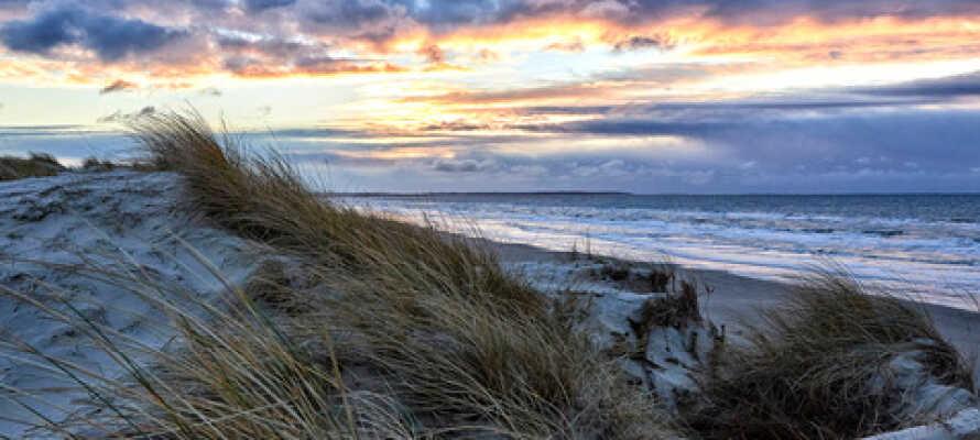 Blokhus er en af de mange smukke områder med skønne strande, så husk at få badetøjet med.