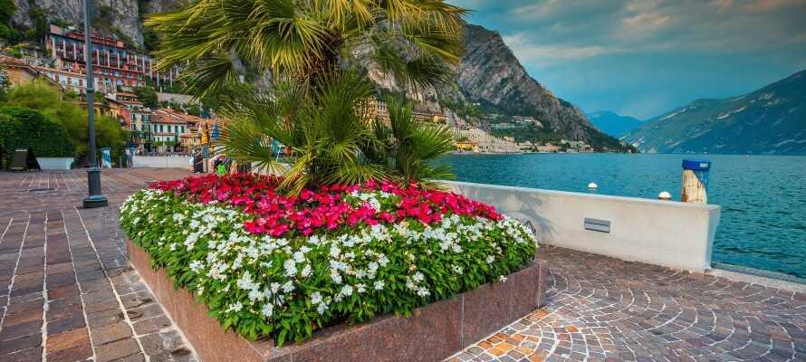 Gå en dejlig tur i Limone sul Gardas charmerende gader
