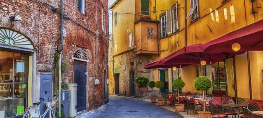 Genießen Sie einen Spaziergang durch die Straßen in der charmanten Stadt Lucca.