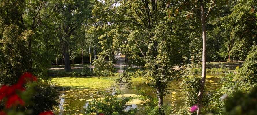 Hotellet ligger omgivet af et idyllisk park- og skovområde med egen sø som bidrager til charmen