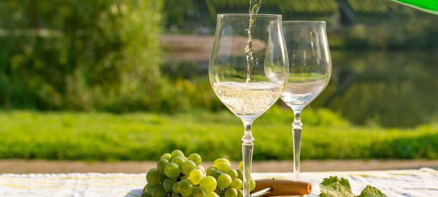Slap af med et glas af vin fra regionen på den skønne terrasse, hvorfra der er udsigt over vinmarkerne.
