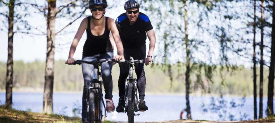 Hotellet arrangerer masser af forskellige aktiviteter såsom bæversafari, vandre- og cykelture og sejlture i området.