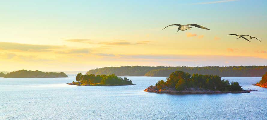 Erleben Sie den schönen Schärengarten von Söderhamn, wo Sie im Meer baden und Kanufahren können.