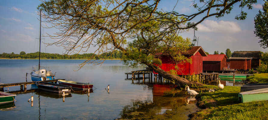 Gå på opdagelse i det naturskønne område ved det UNESCO-listede Schaalsee biosfærereservat.