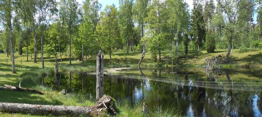 Kalmar byr på mange spennende opplevelser og aktiviteter med alt lige fra museer til nydelige grøntområder.