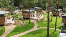 Dere blir innkvartert i de hyggelige og moderne Woodland hjemmene, med plass til opptil fire personer.