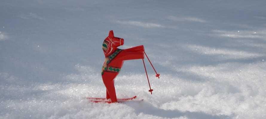 Det er kun ca. 20 minutte med bil til Romme Alpin hvor dere kan stå på ski.