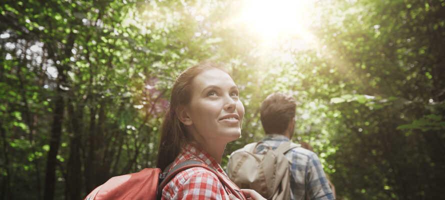 Området er perfekt til aktiv ferie og vandreruterne starter lige ude foran hotellet!