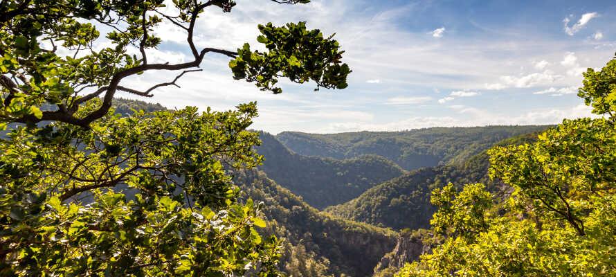 Bodental er et pragtfuldt dalområde og kaldes ofte for 'Harzens Grand Canyon', på grund af de smukke og dramatiske bjerge