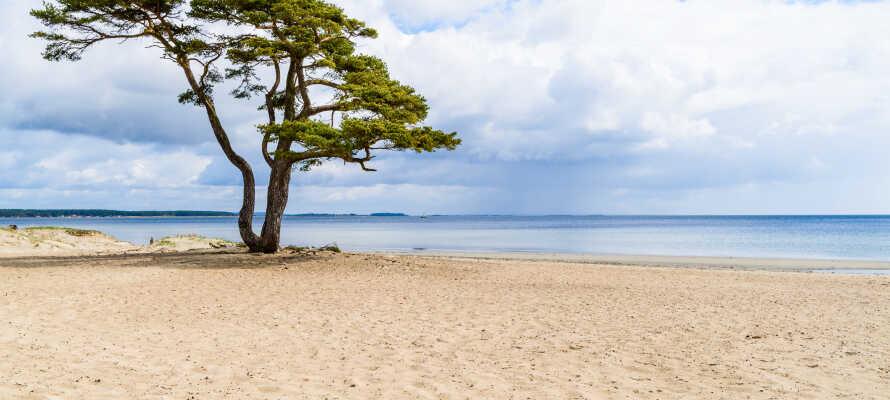 Passa på åka till kuststaden Åhus och besök den vackra sandstranden som är en sevärdhet året runt.