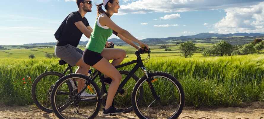 Lad bilen stå, lej en cykel og drag ud i den fantastiske natur på to hjul.