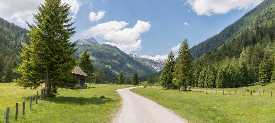 Här bo ni i natursköna omgivningar med goda förutsättningar för vandring och cykling i Biosphärenpark Salzburger Lungau.