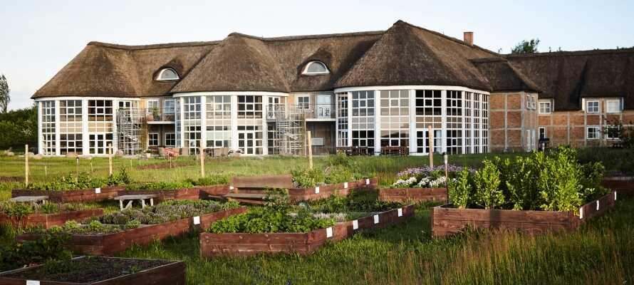 Hotellet har sin egen krydderurtehave og de friske urter blive flittigt brugt til madlavning i køkkenet.