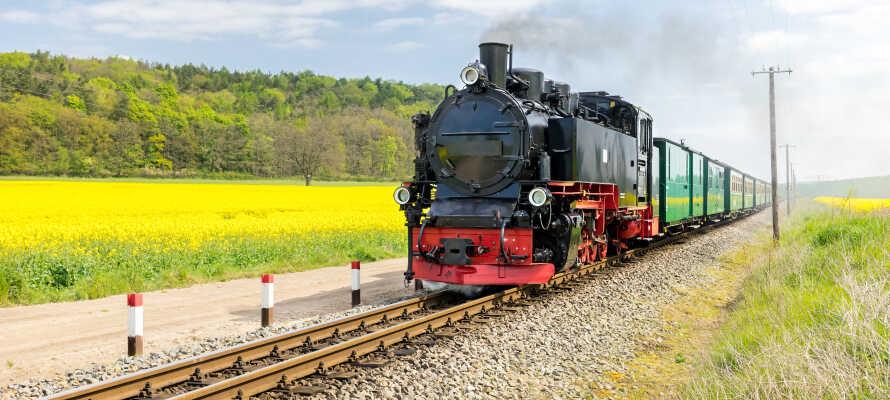 Machen Sie eine Tour mit der beliebten Schmalspurbahn 'Rasender Roland' auf Rügen durch die wunderschöne Landschaft.