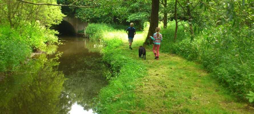 Nyd en tur i et af Fyns skønne naturområder, i stilhed eller i selskab med familien.