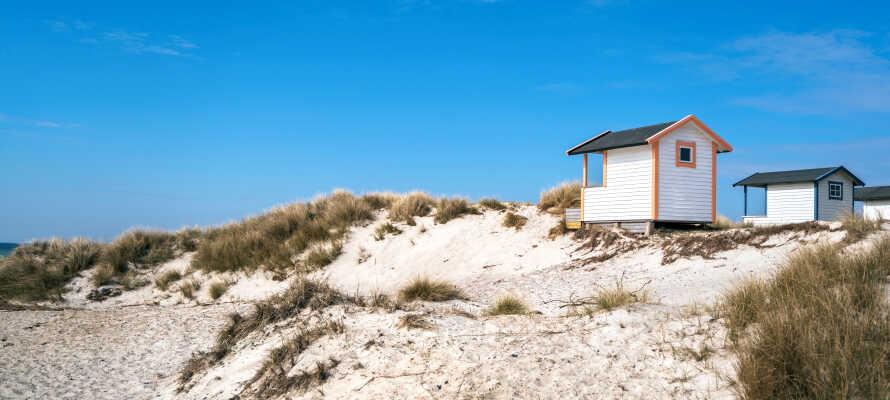 Tag på udflugt til det naturskønne og smukke områder som Skanör-Falsterbo og Höllviken.
