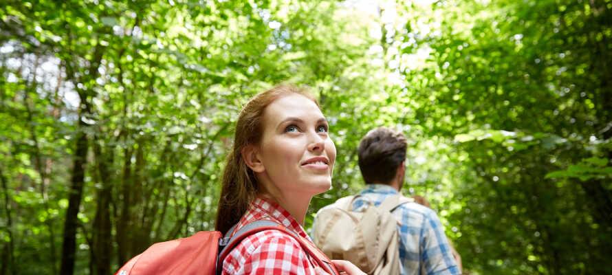 Tag er ut på en aktiv utflykt till fots eller på två hjul, med goda möjligheter för vandring och cykling.