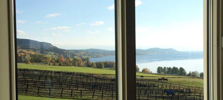 Hotellet har en god beliggenhed midt i den smukke natur.