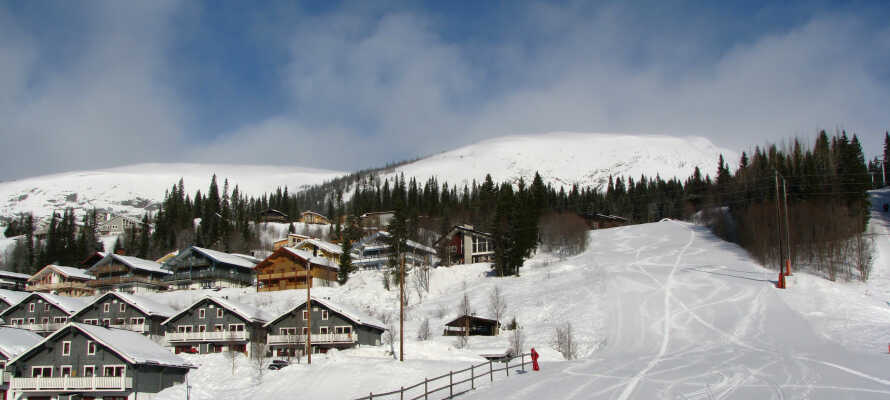 Hotellet ligger ikke langt fra det populære Åre. Perfekt til en vinterferie på ski.