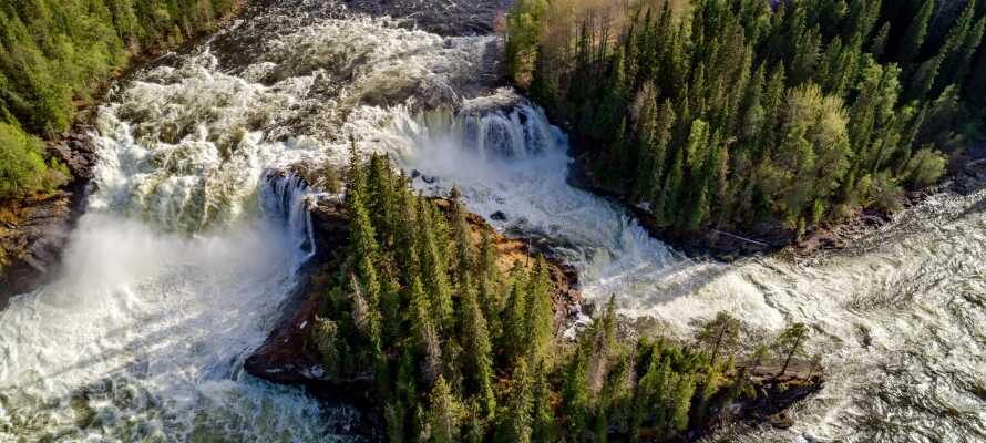 Här bor ni omgivna av den dramatiska jämtländska naturen som vattenfallet Ristafallet