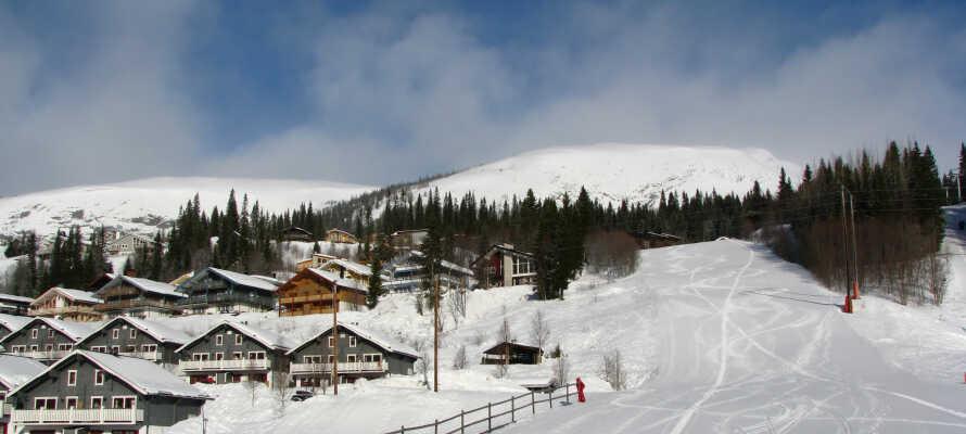Hotellet ligger inte långt från populära Åre, perfekt om ni vill passa på att åka skidor på semestern