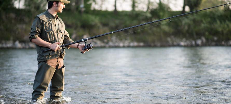 Om ni gillar att fiska finns det goda möjligheter i området