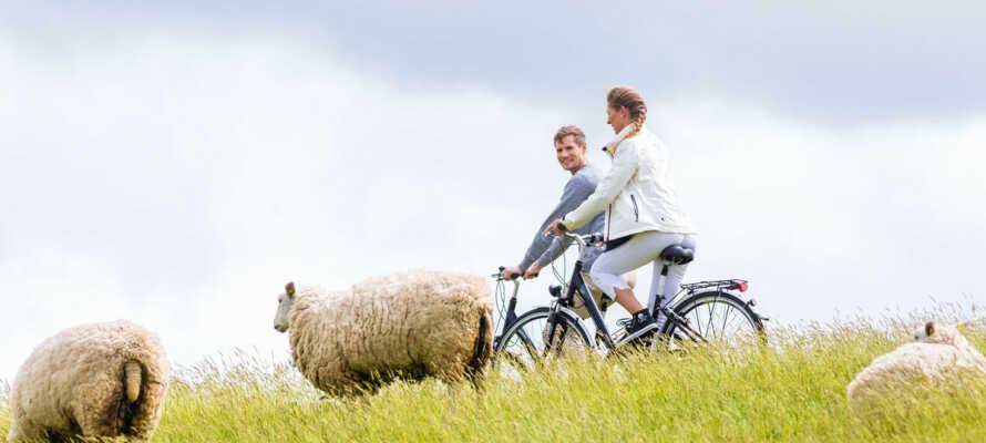 Vom Landhaus Gardels aus erkunden Sie die Nordsee-Region – zum Beispiel sportlich-entspannt auf dem Fahrrad.