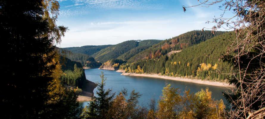 Rennsteig naturområde ligger i en højde af 800 meter.