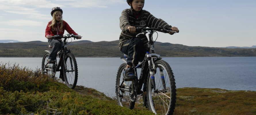 Ni kan göra spännande utflykter i den vackra naturen vid sjön Rødungen som ligger precis vid hotellet.