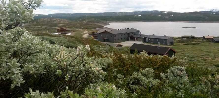Hotellet har ett oslagbart läge på ett berg och är omgivet av den vackra norska naturen.