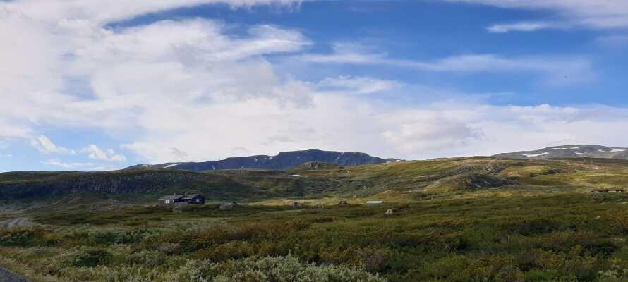 Hotellet ligger nær fjellet, og her er det masse herlig natur å oppleve hele året rundt.