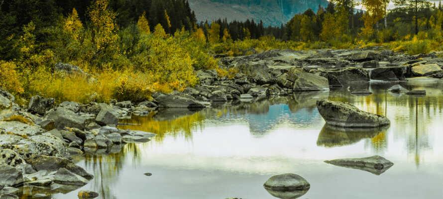I de omgivende landskapene finnes det flere herlige naturområder og nasjonalparker, hvor det er opplagt å dra på gåturer.