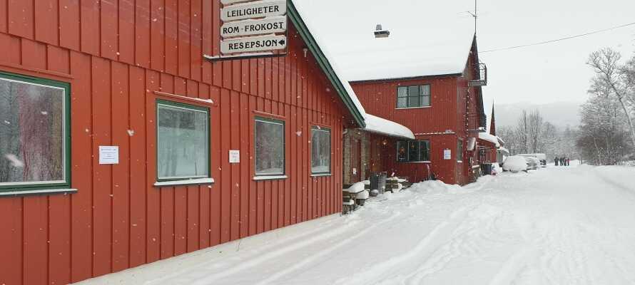 Hotellet ligger tett på det familievennlige skisenter, Skarslia, og tilbyr et godt utgangspunkt for en skiferie i Norge.