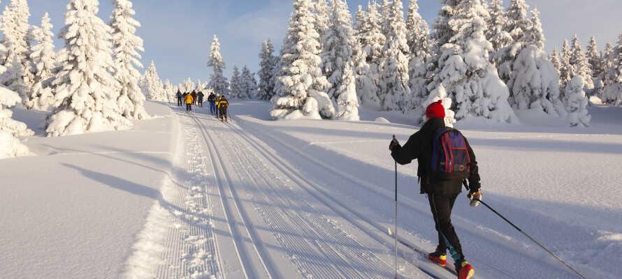 Skarslia Skisenter tilbyr gode forhold for både langrenn, alpinski og kjelke.