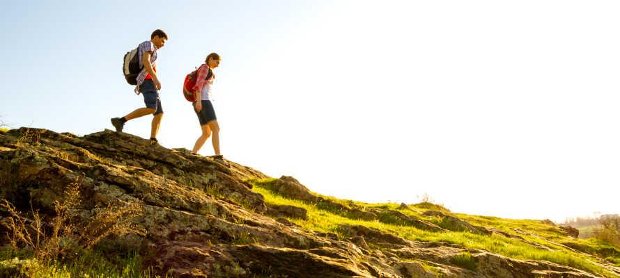 Tag med ressällskapet ut på en härlig vandring i de natursköna omgivningarna.