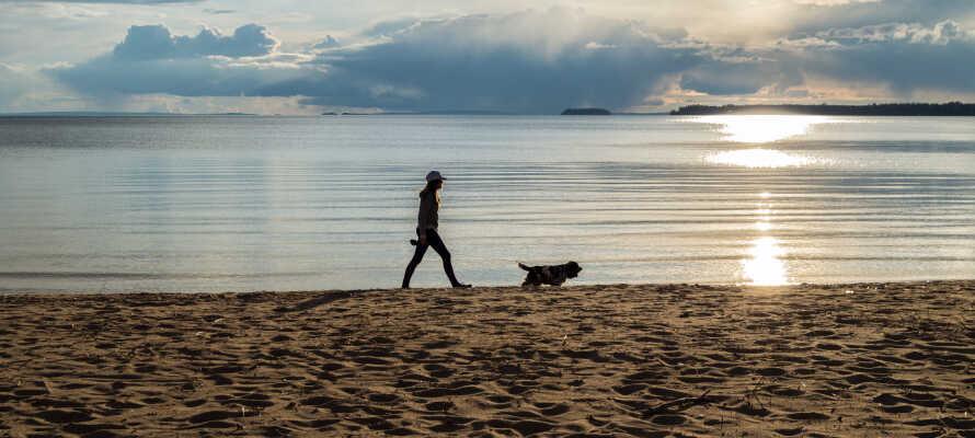 Unternehmen Sie einen Strandausflug zum Varamon-Strand am Vättern-See, dem zweitgrößten See Schwedens.