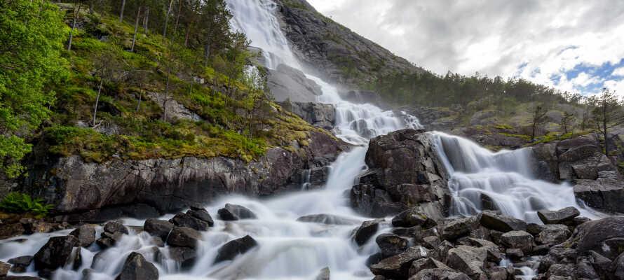 Opplev attraksjoner i verdensklasse i området, som den 600 meter lange fossen, Langfoss
