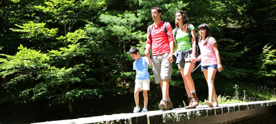 Der Harz ist ideal auch für einen Wanderurlaub mit der ganzen Familie.