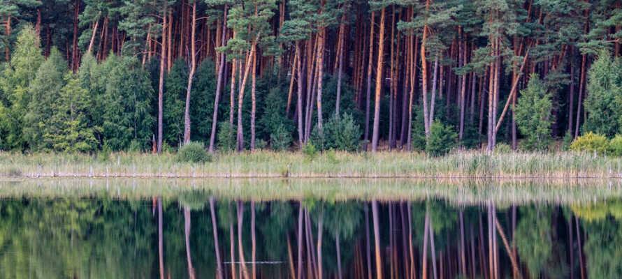 Der er mere end 1000 søer, som I kan udforske i omegnen.